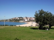 Room for rent - Coogee Beach!